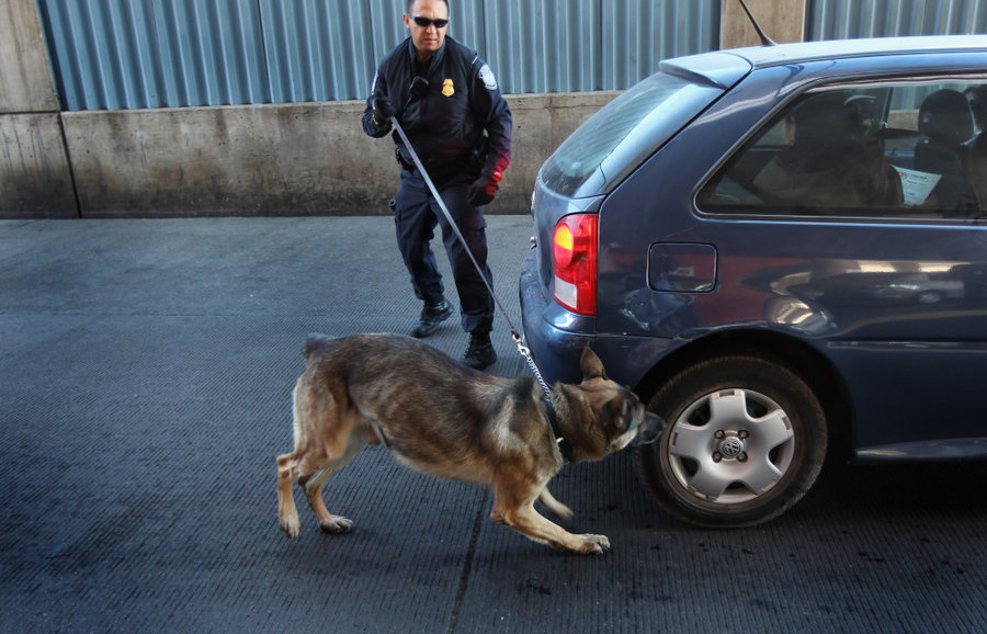 How Are Police Dogs Trained To Smell Drugs