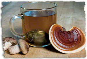 How to Brew a Strong Magic Mushroom Tea – Drugs and Bad Ideas